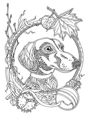 coloring page with Dachshund and autumn elements