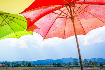 umbrella, red umbrella with rice field and blue sky.