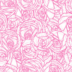 pattern with drawing of pink roses, flower texture