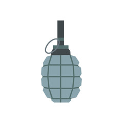 Hand grenade flat icon
