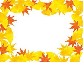 Autumn leaves background of ginkgo and maple