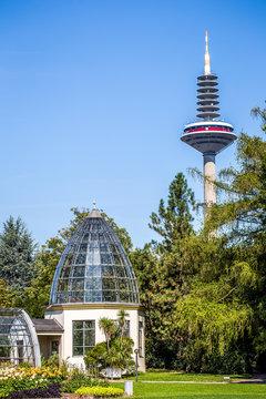 Gewächshaus im Palmengarten in Frankfurt am Main mit dem Fernsehturm Im Hintergrund