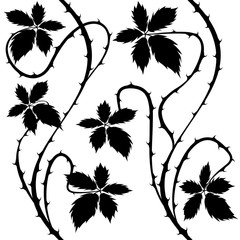 Bush. Floral Seamless Black and White Vector Background.