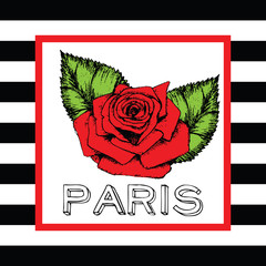 Paris print slogan red rose. For t-shirt or other uses,in vector.