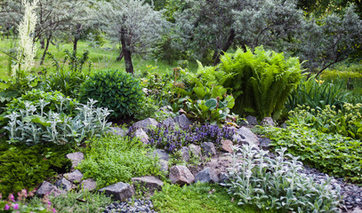 Lush vegetation in the green rock garden Wall mural