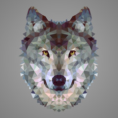 Wolf low poly portrait