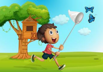 Boy catching butterflies in the garden