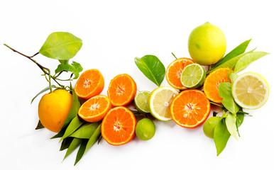 Vitaminreiche Zitrusfrüchte: Orangen, Zitronen, Limetten und Mandarinen :)