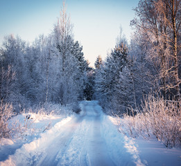 Winter road through the forest at sunset