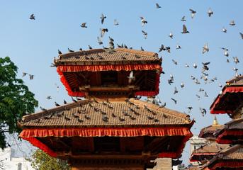 Pigeons flying at Durbar Square in Kathmandu