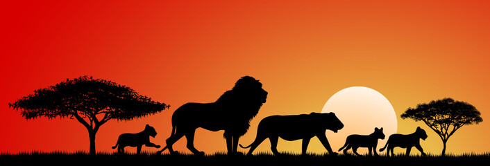 African lions.Lions silhouettes at sunset and abstract landscape. Lions family.