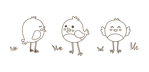 Cute cartoon chickens for coloring book