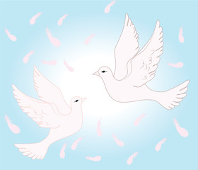 Two pigeons flying in sky of love. Vector