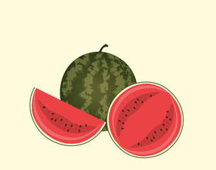 Watermelon isolated. Vector