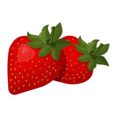 Vector illustration of succulent strawberry