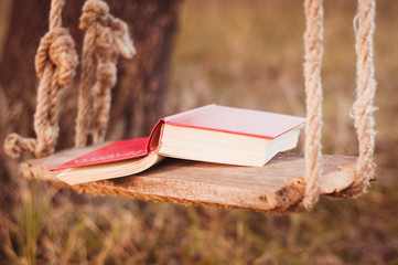 Book on the swing