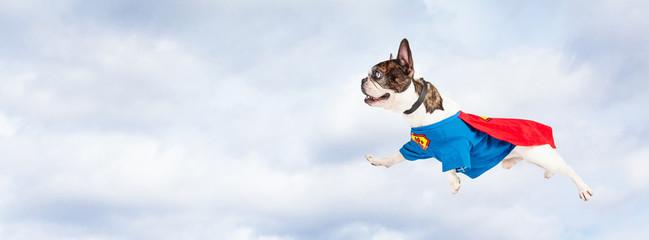 Super Hero Dog Flying Through Sky