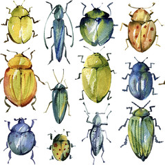 Watercolor seamless pattern of  bright beetles