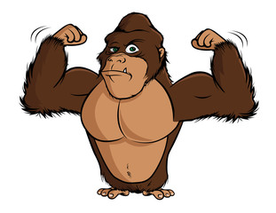 cartoon vector illustration of a gorilla flexing