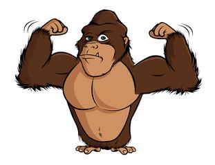 cartoon vector illustration of a gorilla flexing