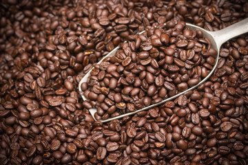 Coffee beans background with spatula