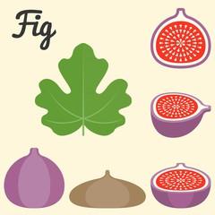 Vector fig icon, flat design