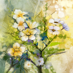 Watercolor painting white Cherry blossoms - Japanese cherry - Sakura floral in soft yellow green color and blurred background. Spring flower seasonal nature background
