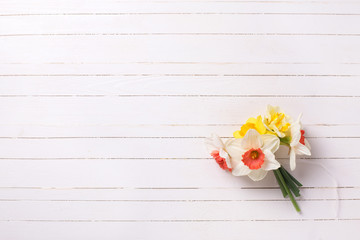 Yellow and pink narcissus flowers  on white  painted wooden plan