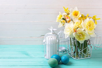 Spring yellow daffodils flowers and Easter eggs on turquoise  wo