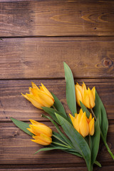 Spring yellow tulips flowers  on brown wooden background.