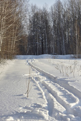 ski track in snow. sunny day, birch forest, deep white snow. shadows