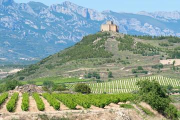 Wall Mural - Viñedo junto al castillo de Davalillo, La Rioja (España)