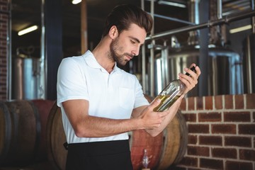 Winemaker examining bottle of white wine