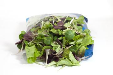 insalata bicolore