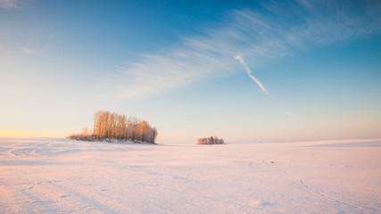 Winter snowy field landscape