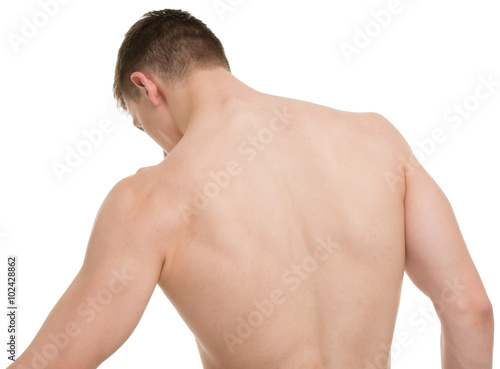Male anatomy back