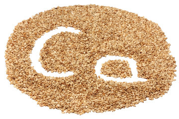 "sesame seeds with letters ""Ca"" (Calcium), bottom view with tilt"