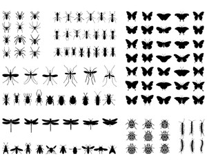 Black silhouettes of different insects, vector