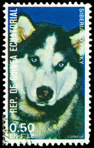 Stamp Husky Sibberiano Stock Photo And Royalty Free Images On