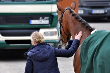 Eine Frau liebkost ihr Pferd