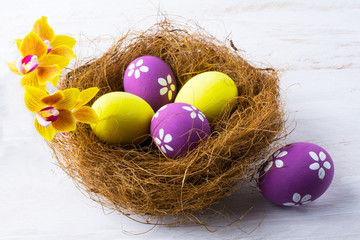 Easter eggs in the nest with yellow orchids