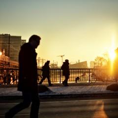 Erwachen im Sonnenlicht