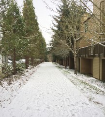 Pathway covered in a light dusting of snow, trees one one side, some townhomes on the other