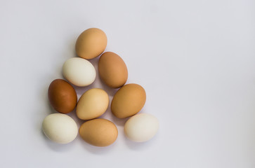 eggs from the farm on a white background