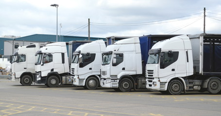 Group of white trucks in a row