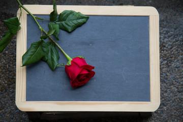red rose on blackboard