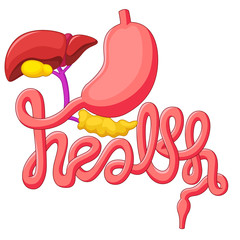 Health campaign symbol human digestive system