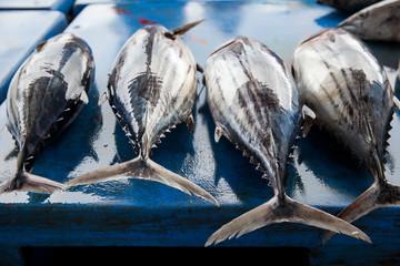 Photo sur Plexiglas Poisson Fresh raw tuna fish in market