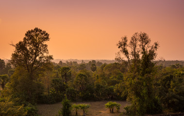 Sunset over the jungle