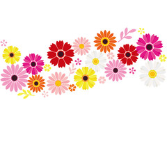 Flower background, gerbera and daisy